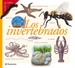 Front pageLos invertebrados