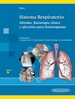 Front pageSECO:Sistema Respiratorio
