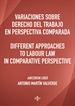 Portada del libro Variaciones sobre Derecho del Trabajo en perspectiva comparada. Different approaches to Labour Law in comparative perspective